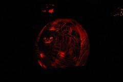 IMG_6451 (comtrag) Tags: jackolanterns rogerwilliamszoo rhodeisland halloween pumpkins pumpkincarving
