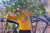 BAILAR CON ÁRBOLES by HONEVO (Honevo) Tags: nataliyaandrukhnenko danza madrid honevo estaesunaplaza citrus bailarconarboles dancingwithtrees