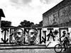 GRAFFITTI - ITACARÉ (izolag) Tags: wwwizolagarmeidahcom izolag arte graffiti streetart urbanart arteurbana izo brazilianart brazilianartist modernart artemoderna rua pintura pb