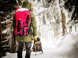 Let it snow... (Explore 18.12.17 #207)