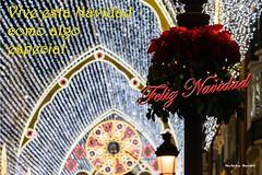 2017 Felicitacion Navidad_1 (Álvarez Bonilla) Tags: navidad natività nadal nativity christmas málaga iluminación lights illuminazione flores flowers fiori merry