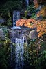 Fountain of youth (PeterThoeny) Tags: saratoga california siliconvalley sanfranciscobay sanfranciscobayarea hakonegardens park garden japanesegarden water waterfall sony sonya7 a7 a7ii a7mii alpha7mii ilce7m2 fullframe vintagelens dreamlens canon50mmf095 canon 1xp raw photomatix hdr qualityhdr qualityhdrphotography tree rock forest fav100