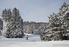 Blue Mountain (naturethroughmyeyes.com) Tags: mountain outdoors winter collingwood ontario canada northamerica bluemountain skiing skier cold wintersports barbaralynne naturethroughmyeyescom copyrightbarbdarpino barbaralynnedarpino barbdeardendarpino naturephotographer femalephotographer wildlifephotographer canon1dx eos1dx