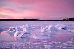 Ice Forms (Steve Bosselman) Tags: snow ice frozen cold twilight capecod