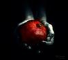 She hands (kalbasz) Tags: hands art pomegranate fujixt2 xf1855 hdr artistic black white red fine colors pomegranade gránátalma kezek kéz
