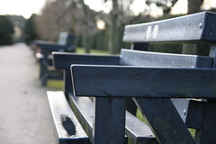 Benches (umphotography) Tags: swans rufford park abbey nottinghamshire mansfield ollerton a614