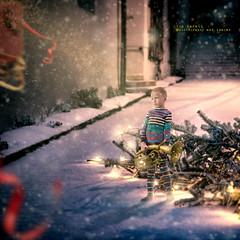 Keep calm and believe in Santa (olgavareli) Tags: olga vareli santa believer believe sleigh christmas tree child trumpet ribbon night snow magic realism