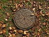 Jedes Ding hat seinen Namen / Every Thing Has a Name (bartholmy) Tags: hartford ct bushnellpark sewer gully gullydeckel laub leaves moos moss muster pattern herbst autumn fall abstrakt abstract minimal minimalism minimalismus minimalistisch