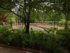 Champers garden view (Jenni's_Garden) Tags: mediterraneangarden gardendesign walled garden stonework