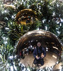 TOPW Seasonal Lights Night Walk 2017 - Baubleverse (Jay:Dee) Tags: topw2017rs topw toronto photo walks seasonal lights night walk 2017 selfie reflection christmas tree ornament bauble