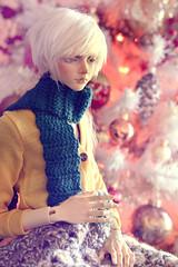 ☆ Waiting for Santa ☆ (Shimiro Kestrel) Tags: bjd doll christmas photography bjdphotography bjdportrait bjdcustom dollphotography bjdhybrid portrait cute kanadoll kanadolladrian spiritdoll spiritdollproud abjd