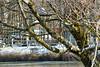 Nature & Landscape (Landscapes of Europe) Tags: italy riccia molise travel landscape nature snow lake frozen