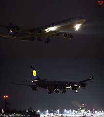 Lufthansa Airbus A340-600 (AircraftLovers.com) Tags: lufthansa airbus a340642 a340600 a340 daihy berlin planespotting aviation avgeek airport berlinairport tegelairport tegel txl eddt aircraft flugzeug plane germany aircraftlovers lovers aircraftloverscom aircraftloversde