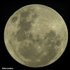 Super Moon 2018/01/01 (MFMarcelo) Tags: moon supermoon 2018 sky night astrophotography astrometrydotnet:id=nova2383973 astrometrydotnet:status=failed