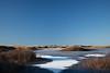 Frozen (Ivan Mæland) Tags: beach water ice grass sky landscape people sparkle blue january