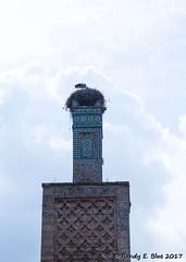 Rabat 051117 059 (REBlue) Tags: morocco rabat the great mosque salé minaret zellige tilework sultanabuyusufyaqubalmansur chellah