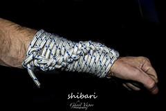 SHIBARI (TheGhostVaporVision) Tags: shibari hogtie bondage knot rope art artist japanese kuffs photography photographer