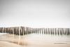 La brume (hyeronimousse) Tags: brume pointe du cap ferret bassin darcahon aquitaine sud ouest plage beach piquet eau water ocean nikon d7100 nd filter filtre neutre pose longue long exposure nikkor 1755 f28