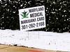 sure (citron_smurf) Tags: maryland wheaton medicalmarijuana marijuana pot thc weed cannabis medicine montgomerycounty politics controversial