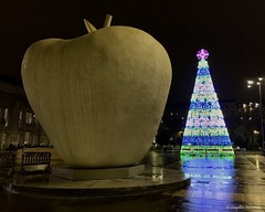 IMG_5073 Apple and Christmas tree (Claudio e Lucia Images around the world) Tags: milano christmas christmastree lights evening night edificio albero persone notte cielo strada città stazionecentrale railwaystation centralrailwaystation piazzaducadaosta moderntree iphone iphone6plus apple