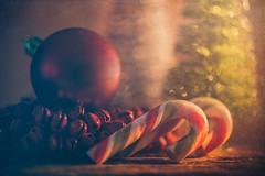 Old fashioned candy cane (Ro Cafe) Tags: christmas litbycandlelight macro decoration softlight warmlight candycanes setup arrangement stilllife softfocus nikkormicro105f28 nikond600 textured sundaylights christmasspirit