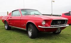 XBL 287E (Nivek.Old.Gold) Tags: 1967 ford mustang 289 fastback 5700cc
