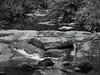 Tasmania 2017 110 (Lesmacphotos) Tags: tasmania black white touringtasmania water waterfall shed abstract