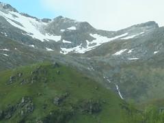 ile de Vestagoya (Micheline Canal) Tags: europe norvège ileslofoten fleur animaux mouton océan montagne