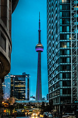 Tower at Blue Hour (A Great Capture) Tags: downtown buildings bluehour tower cn toronto agreatcapture agc wwwagreatcapturecom adjm ash2276 ashleylduffus ald mobilejay jamesmitchell on ontario canada canadian photographer northamerica torontoexplore fall autumn automne herbst autunno 2016 city lights urban cityscape urbanscape eos digital dslr lens canon rebel t3i sky himmel ciel bluesky outdoor outdoors streetphotography streetscape street calle
