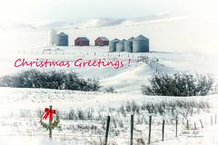 Christmas Greetings! (L E Dye) Tags: christmas fencefriday 2017 alberta canada d5100 ledye nikon wreath barbwirefence grainaries prairie rural snow winter sharples