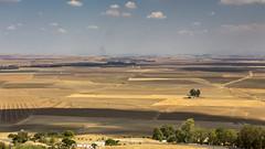 Carmona (Hans van der Boom) Tags: vacation holiday spain andalucia carmona landscape arable farmland vista gold yellow es