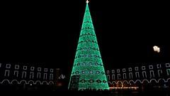 Same old same old (Bosc d'Anjou) Tags: portugal lisbon christmas terreirodopaço praçadocomércio christmaslights