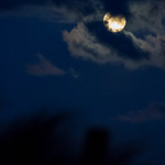 Full moon behind a thin layer of clouds thumbnail