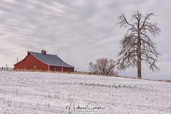 Valley Ford Red Barn (NikonDigifan) Tags: palouse redbarn barn rural easternwashington farming agriculture winter snow nikond750 nikon nikon28300 pacificnorthwest pnw inlandnorthwest niksoftware colorefexpro mikegassphotography