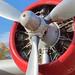 B-17_ADSC_0346