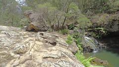 Nattai Creek _14 (Tony Markham) Tags: fortyfootfalls 40footfalls lakealexandrareserve nattaicreek creek waterfall falls sourthernhighlands bushwalk walk