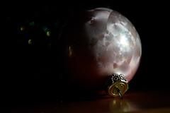 ...grandma's tradition... (carbumba) Tags: ornament holiday pink still christmas christmastime closeup nikon
