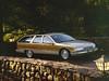 1991-1996 Buick Roadmaster Estate Wagon (biglinc71) Tags: 19911996 buick roadmaster estate wagon