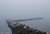 Linee (paolotrapella) Tags: linea water acqua nebbia laguna delta argine canon tamron
