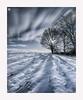 Shadow-Play (Stuart Leche) Tags: clouds fence leicestershire longexposure sky snow stuartleche sunlight trees winter farmland wwwstuartlechephotography