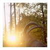 Ibex (ngbrx) Tags: brienz berneseoberland switzerland ibex steinbock wildtierpark zoo schweiz suisse svizzera sunlight sun sonnenlicht sonne evening abendsonne bern bernese berner berne oberland