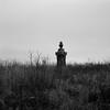 In a Cemetery, near Tekoa, Washington (austin granger) Tags: cemetery tekoa washington palouse headstone grave death winter memorial film gf670
