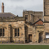 Palace Green Library (itmpa) Tags: palacegreenlibrary universityofdurham universitylibrary library 1820 1882 1880s awblomfield palacegreen listed gradeii durhamcastleandcathedralworldheritagesite worldheritagesite square crop cropped durham england archhist itmpa tomparnell canon 6d canon6d