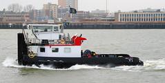 WALVIS (kees torn) Tags: duwboot sleepduwvaart walvis adelaar nieuwewaterweg hoekvanholland noordzeeweg landtongrozenburg breeddiep