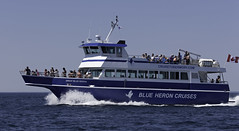 Great Blue Heron (blueheronco) Tags: georgianbay ontario canada greatblueheron passengerboat tour glassbottomboat blueheroncruises lake cruise tourism passengers people boat vessel
