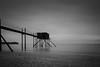 Seul face à l'Atlantique (David-Charles Arrivé1) Tags: mer minimalisme poselongue nd400 nb nature bw