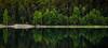 Reflection (Mikael R.) Tags: reflection landscape photography tree sea archipelago finland skärgård saaristo island still nikon d7000