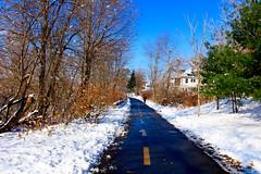Arlington, Minuteman bikeway (ole_G) Tags: