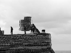 building the woodpile-02 (Quetzalcoatl002) Tags: scheveningen pallets bonfire fire newyear bw blackandwhite thehague work beach