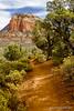 Devil's Bridge trail (doveoggi) Tags: 8313 arizona sedona town trail hike trees cliff